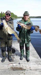 angeln in schweden