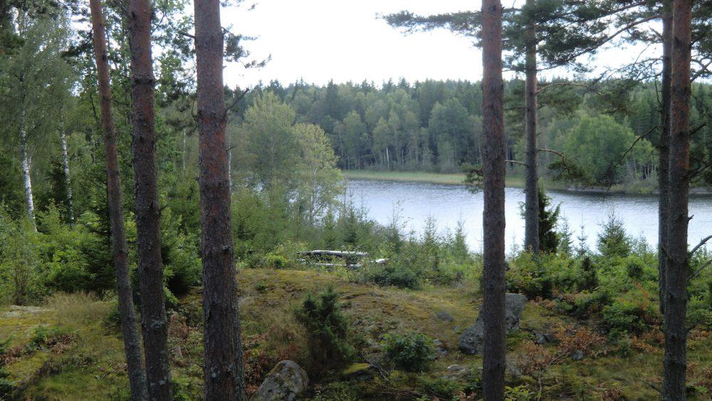 Terrassenblick auf den See Kiasjön