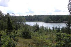 Der See Kiasjön - Blick vom Dachsbau