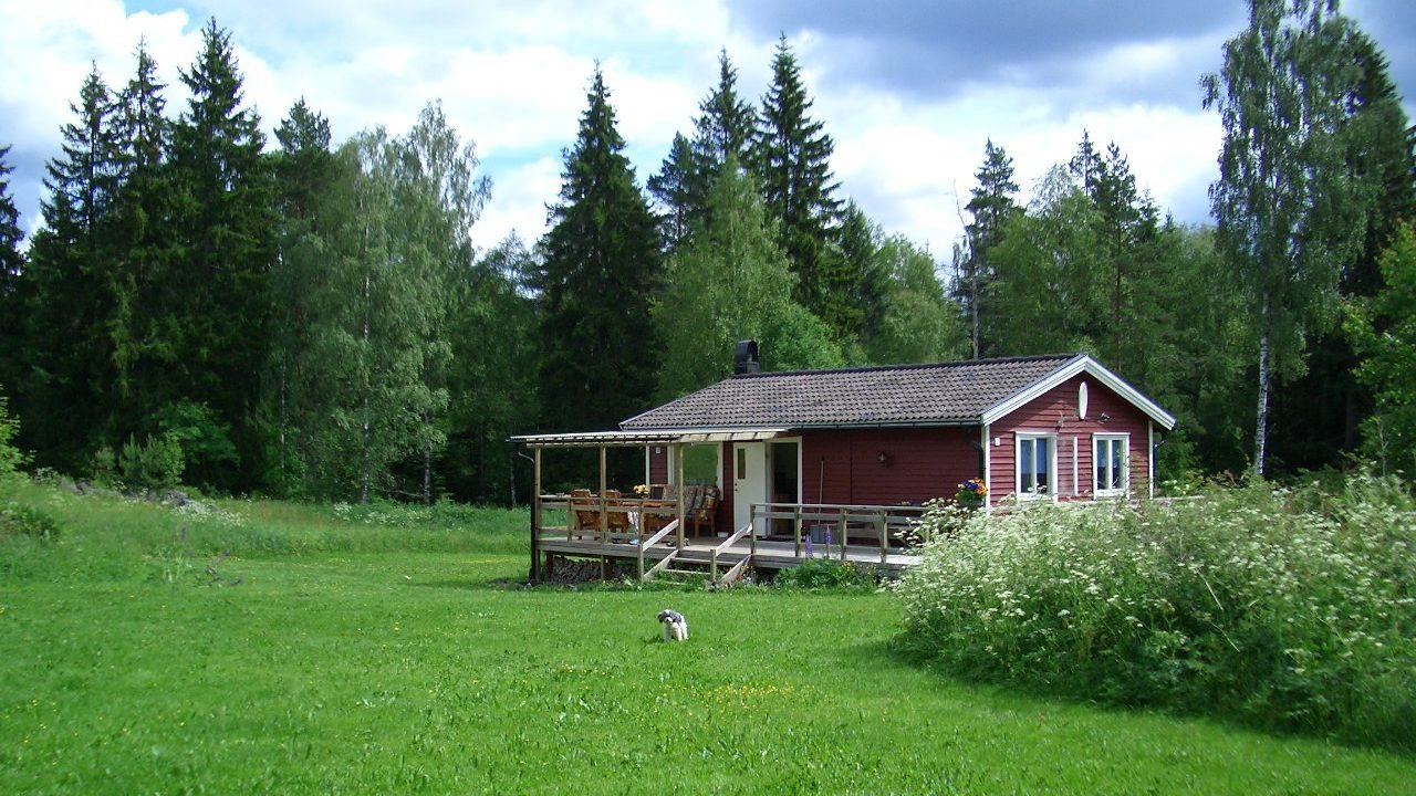 Ferienhaus auf großer Wiese