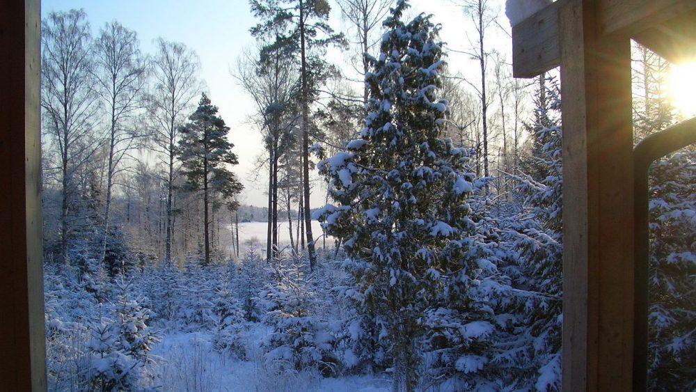 Blick zum See im Winter