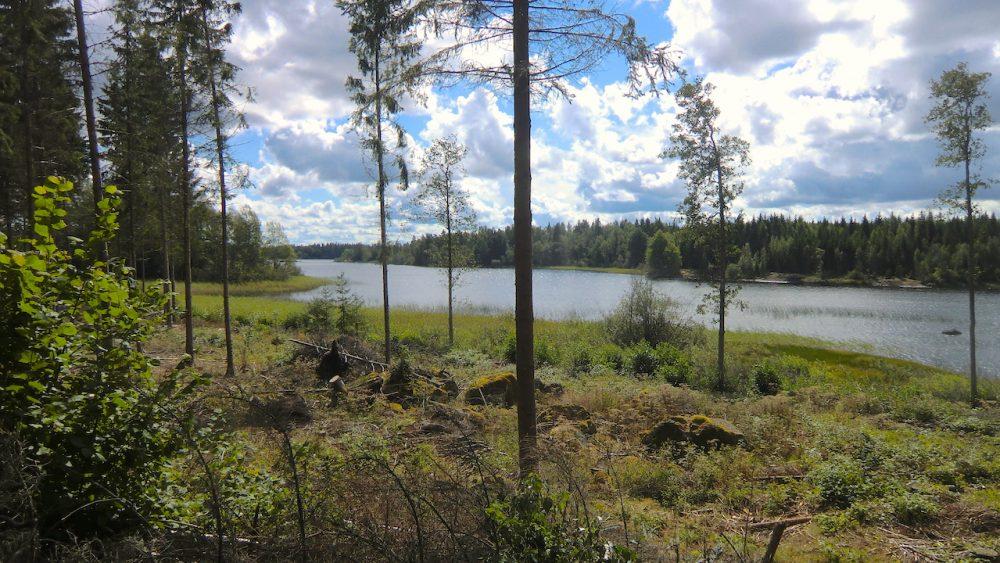 Ausläufer des Sees Kiasjön am Haus Elchhöhe