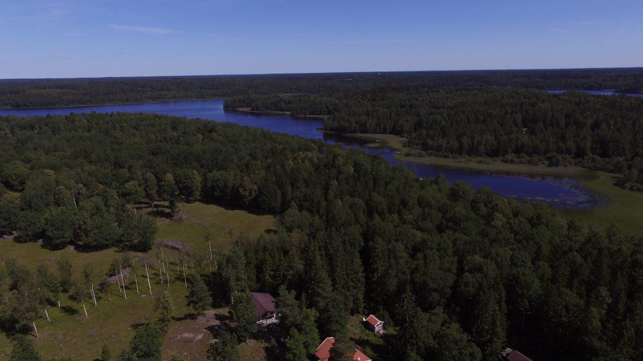 Der See ist nur 100 m Waldweg entfernt