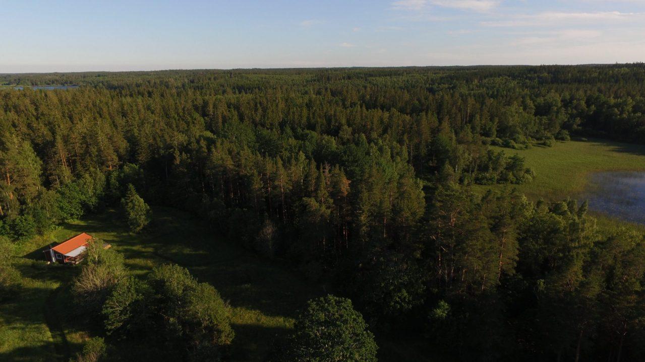 zum See sind es nur 200 m durch den Wald zum eigenen Steg
