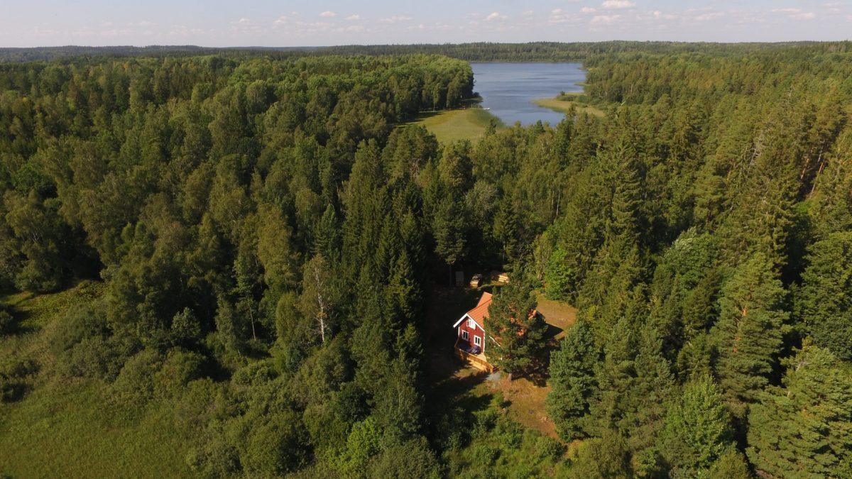 Einsame Lage im Wald und direkt am See