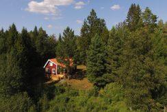 Ein Traum im schwedischen Wald !