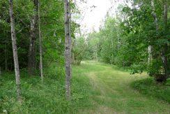 1 ha (10.000 qm) großes Grundstück