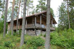 Blockhaus Dachsbau mitten im Wald