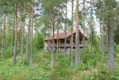 Alleinlage im Wald am See