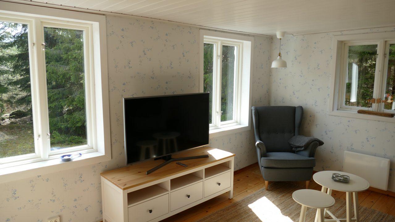 TV Raum mit Seeblick