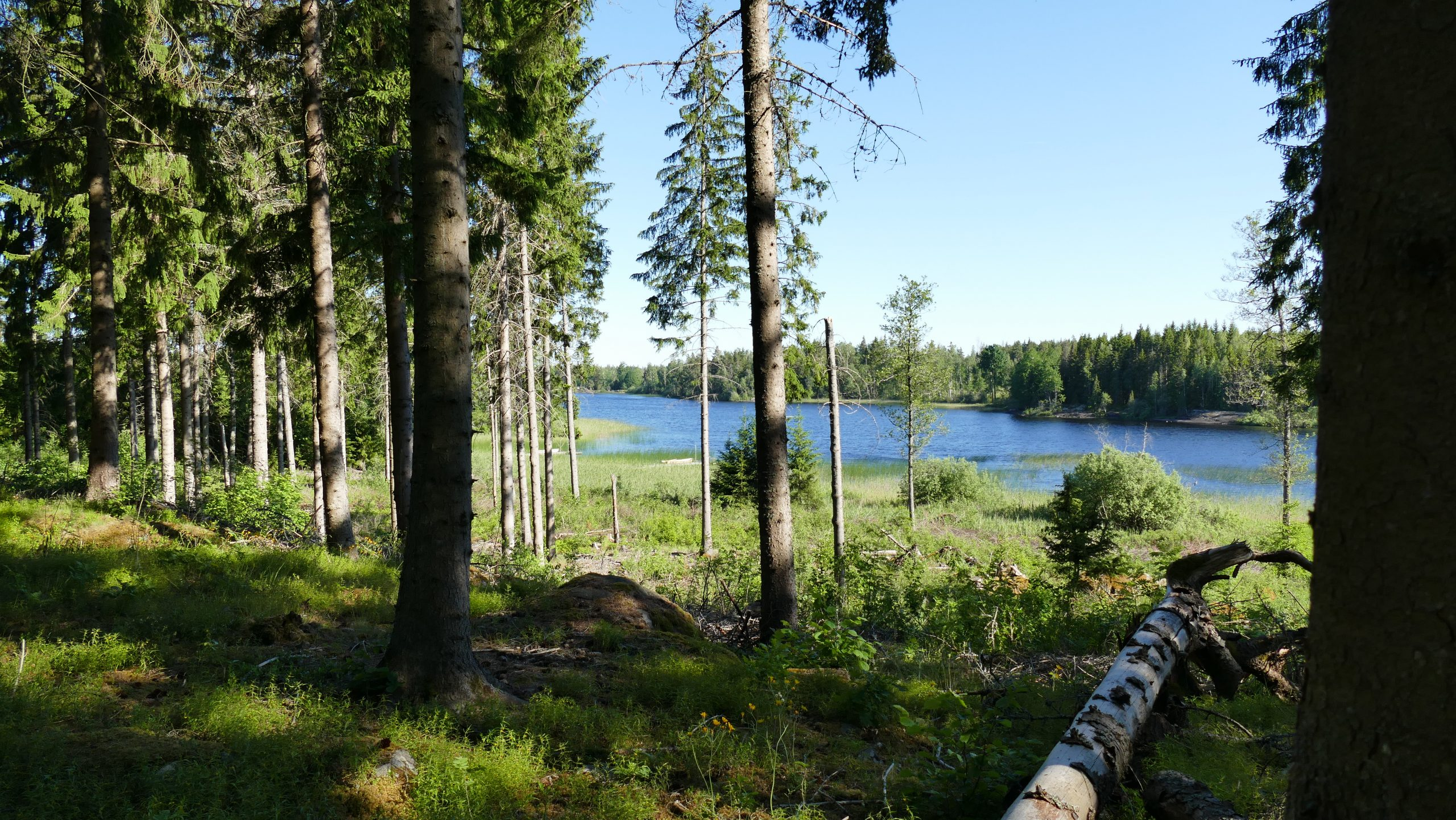 Tolles Seegrundstück im schwedischen Småland