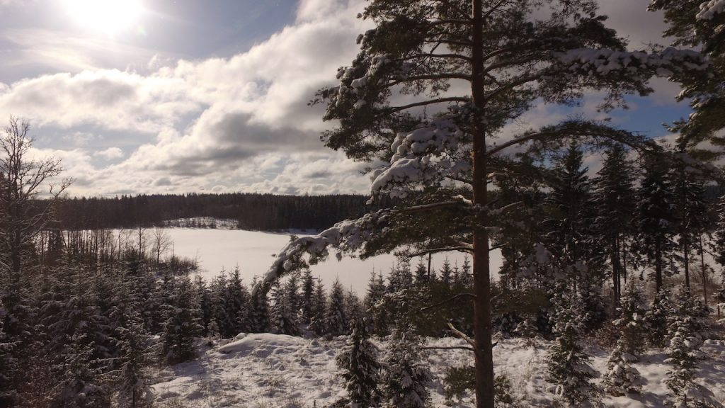 See Kiasjön im winter in Schweden wnterurlaub im dachsbau